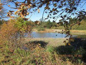 Landschaft und Umgebung